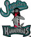 Jupiter Hammerheads